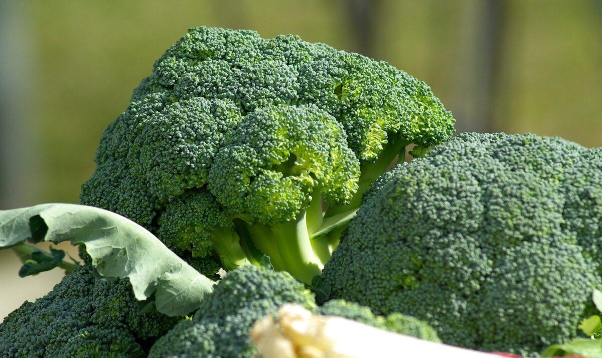 Awet Muda dengan Mengonsumsi Brokoli